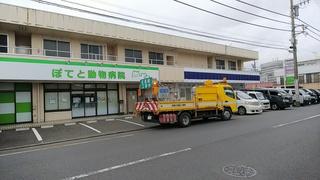 DSC_0751.JPG
