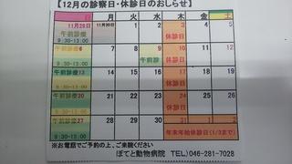 DSC_4782.JPG