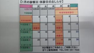 DSC_4783.JPG